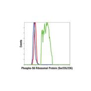 Anti-rabbit IgG (H+L), F(ab') 2 Fragment (Alexa Fluor ® 647 Conjugate)