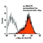 c-Myc Antibody (A-14) FITC